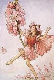 Almond Fairy