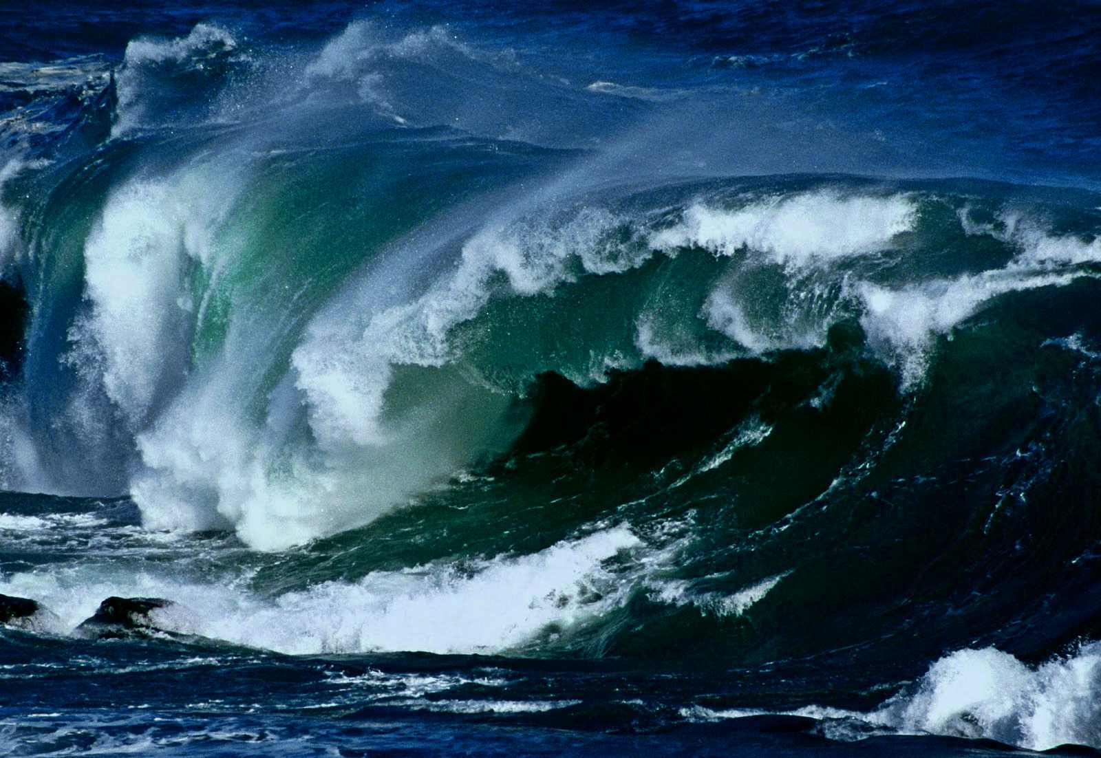 tsunami waves The answers will determine whether the fight for control of the house is a democratic-leaning tossup, as history and national polls imply, or whether democrats are poised for a tsunami, as the special election results suggest.