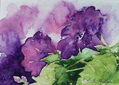 PurpleMornGloryCU_May09_100_1540