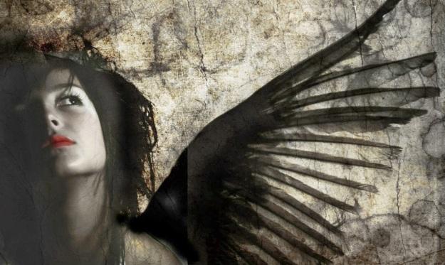 wings 5